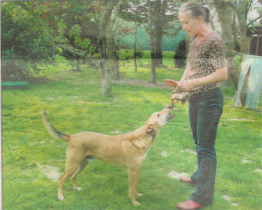 APORT Hundeschule Presse Fotos: Nina Kallmeier