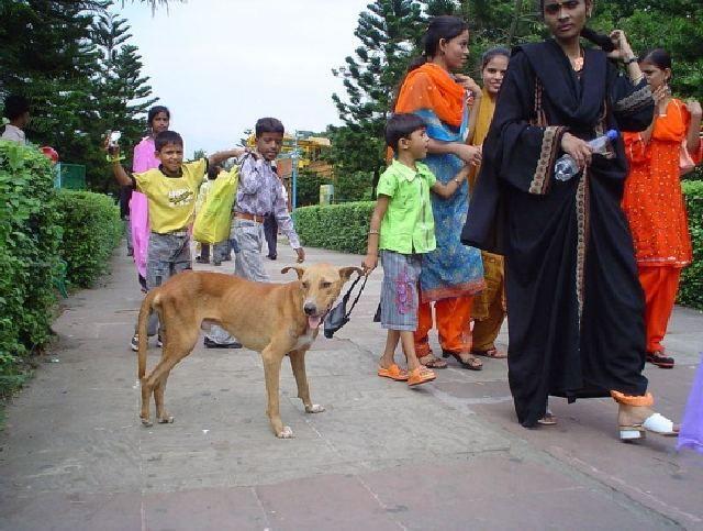 (cc) Biswarup Ganguly, 2006, Ost-Indien wikipedia