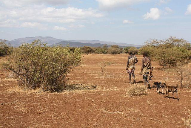 ©Andreas Lederer. Hadzabe-Männer nach der Jagd, Ostafrika 2008, Wikipedia