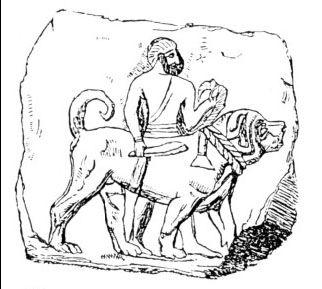 Assyrischer Hund, ca. 640 v.Chr.