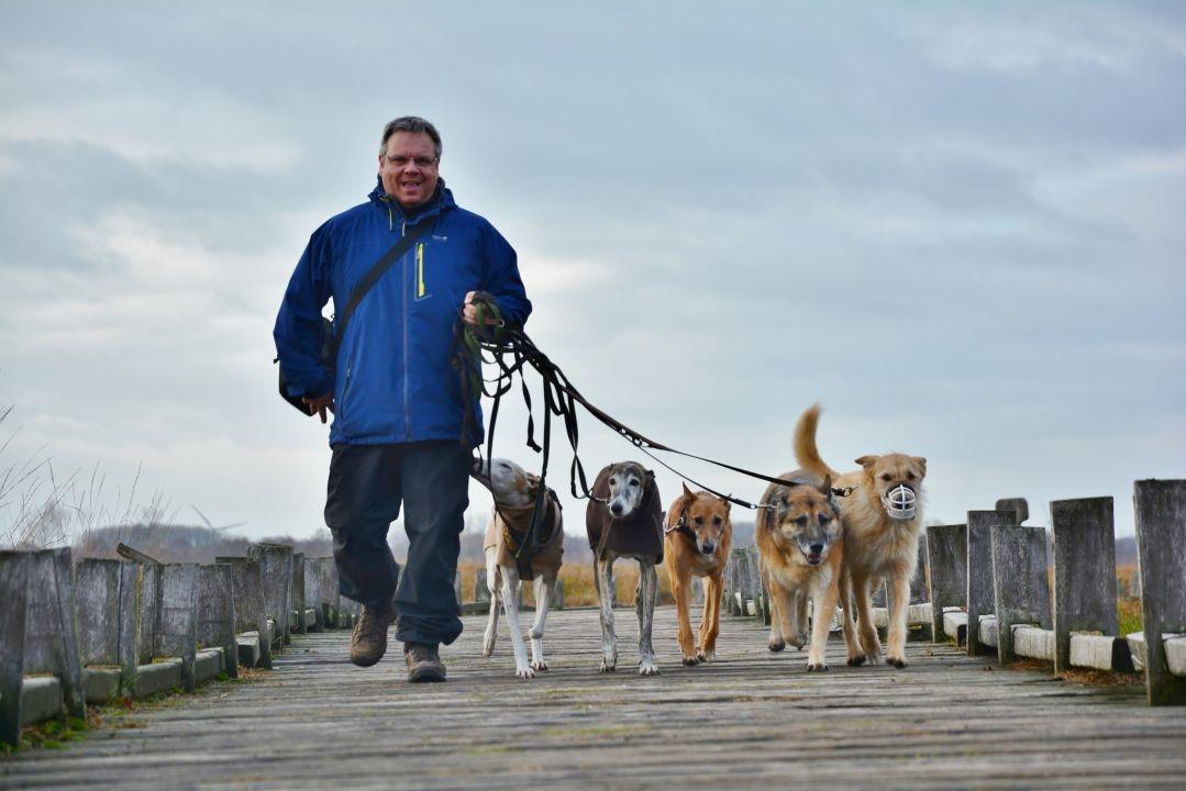 Exklusives Hundetraining erhältst du bei A.P.O.R.T. - authentisch-fair-nachhaltig
